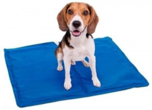 Dogs Collection cooling mat dog 65 x 50 cm gel blue